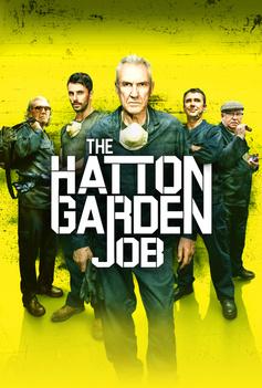 The Hatton Garden Job image