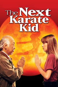 The Next Karate Kid image