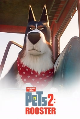 The Secret Life Of Pets 2: Rooster