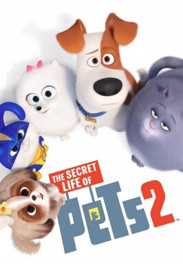 Free Preview The Secret Life  (2019)