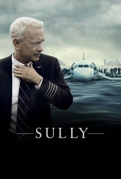 Sully image