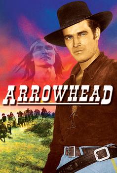 Arrowhead image