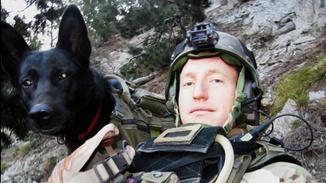 War Dog: A Soldier's Best Friend image