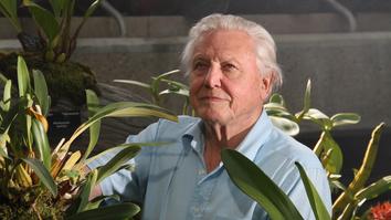 David Attenborough's Kingdom Of...