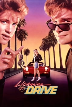 License to Drive image