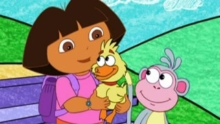 Quack! Quack!