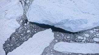 Arctic Peril image