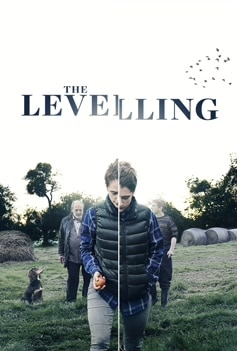 The Levelling image