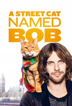 A Street Cat Named Bob image