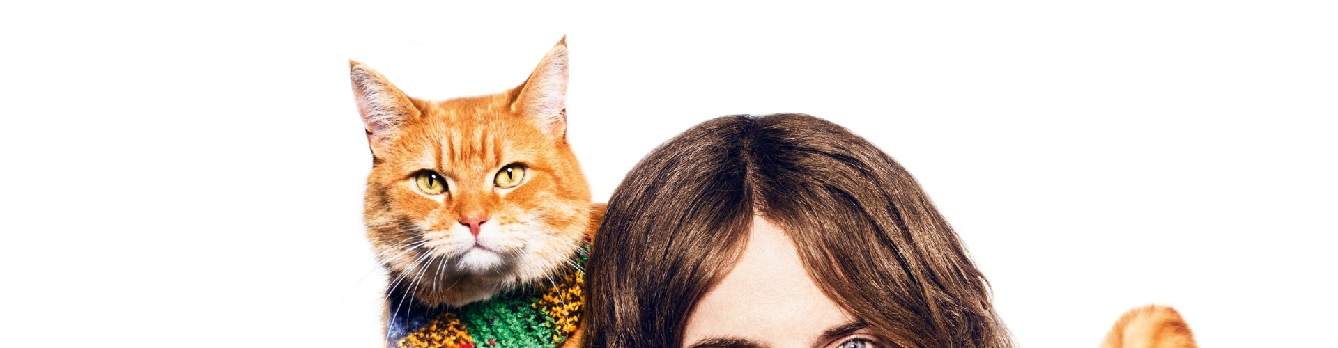 Watch A Street Cat Named Bob Online