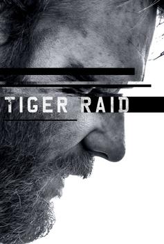 Tiger Raid image