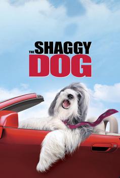 The Shaggy Dog image