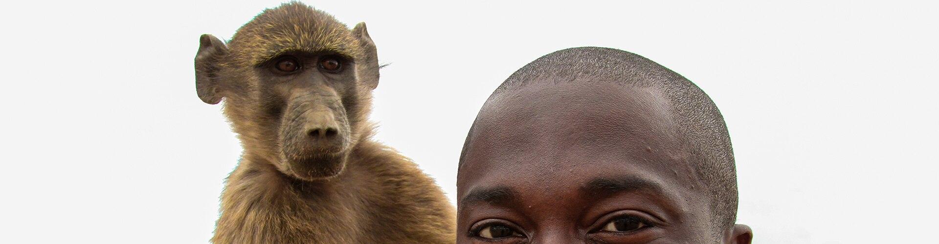 Watch Monkeys: An Amazing Animal.. Online