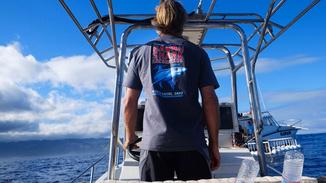 Shark Survivors: USA image
