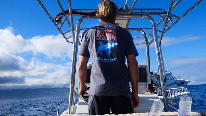 Watch Shark Survivors: USA Online