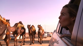 Miss Camel Beauty Contest image