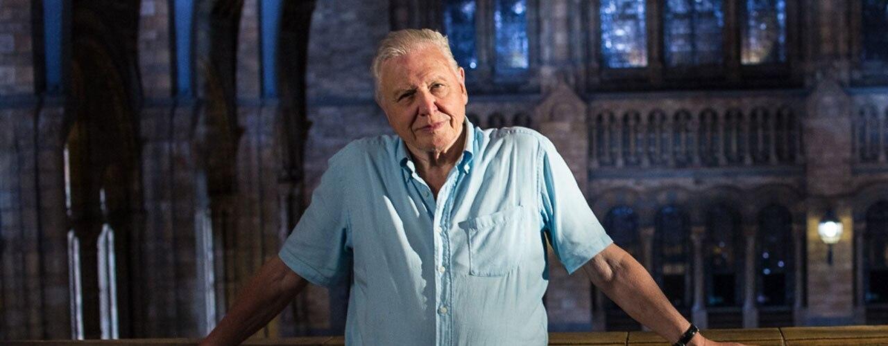 Watch David Attenborough's Natural Histor Online