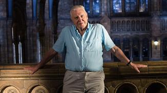 David Attenborough's Natural Histor image