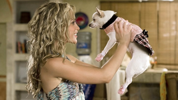 Watch Beverly Hills Chihuahua Online
