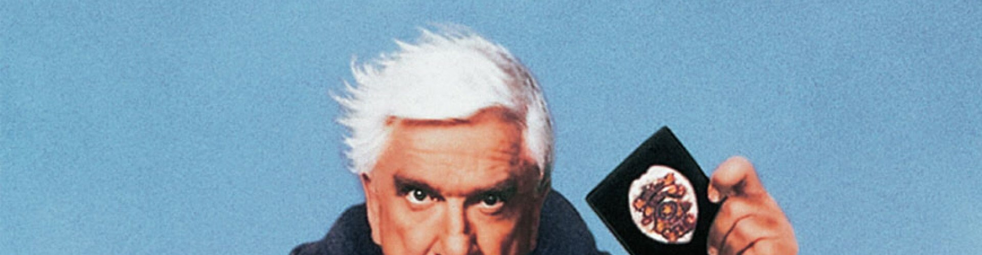 Watch Naked Gun: From The Files... Online