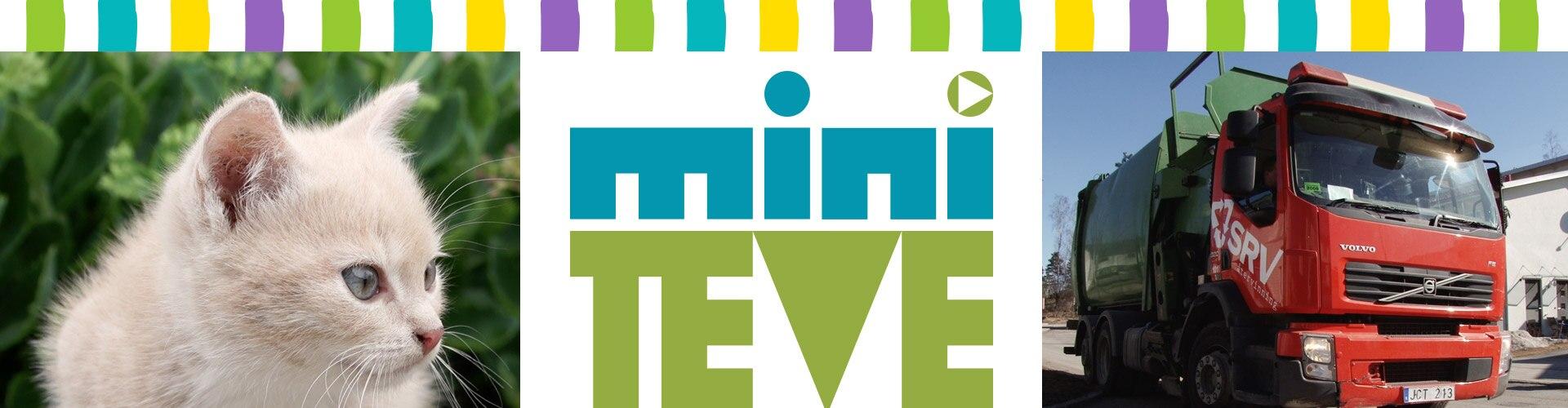 Watch Miniteve Online