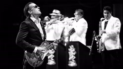 Joe Bonamassa: Muddy Wolf At...