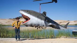 Mythbusters Vs. Jaws image