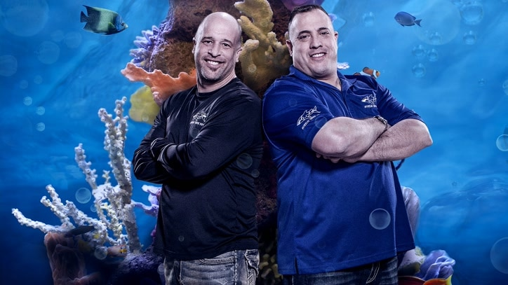 Watch Tanked Online