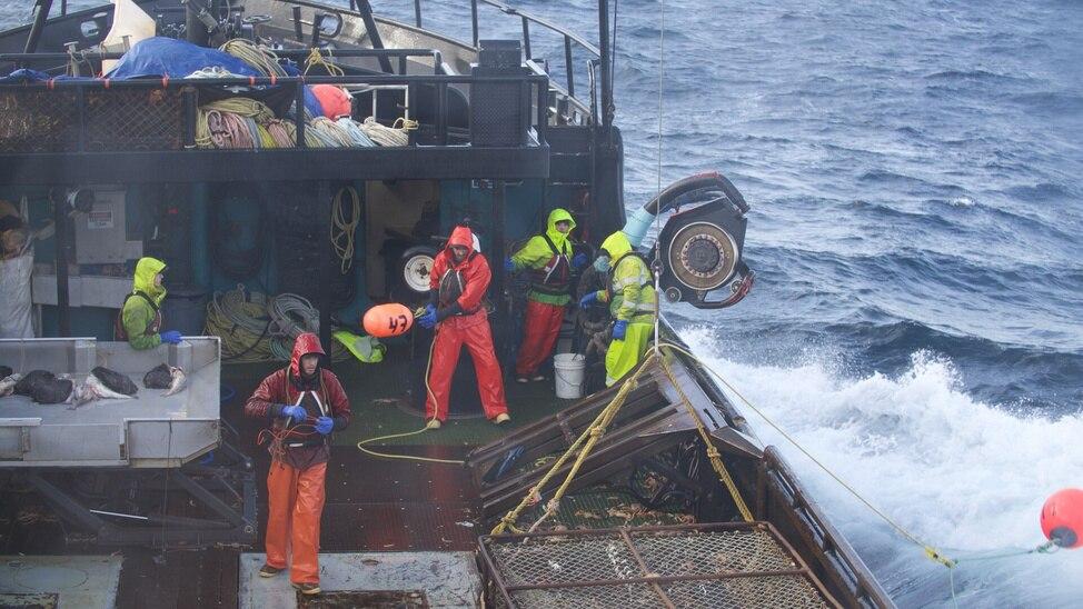 Greenhorn Overboard