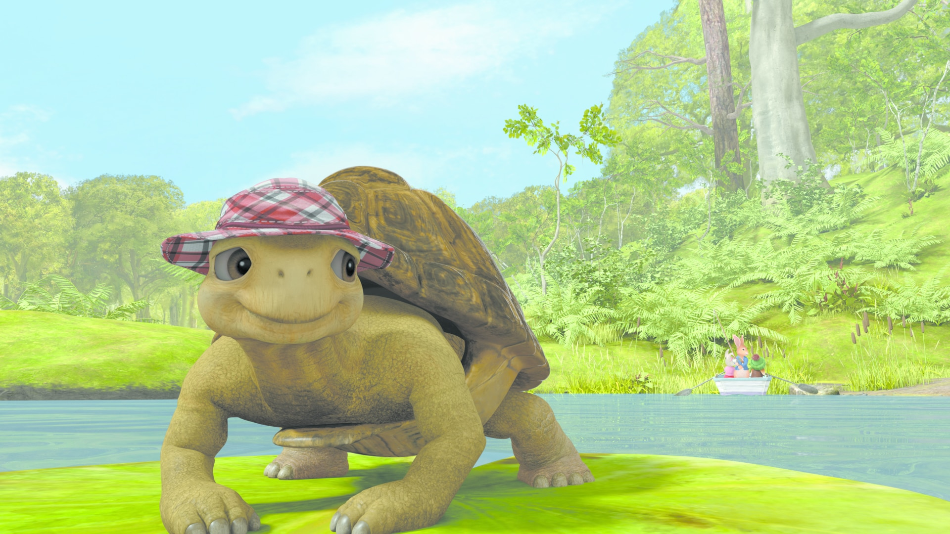 The Tale Of The Great Tortoise Rescue