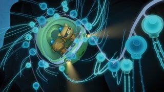 Octonauts And The Siphonophore