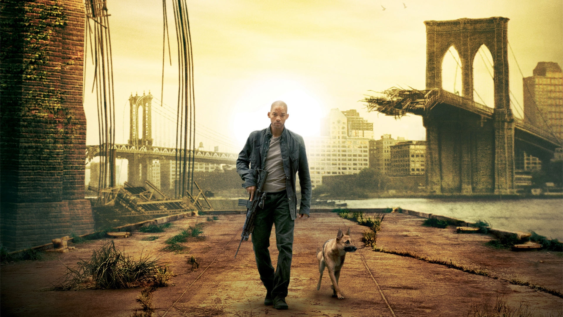 Watch I Am Legend Online Stream Full Movie Nowtv Free Trial