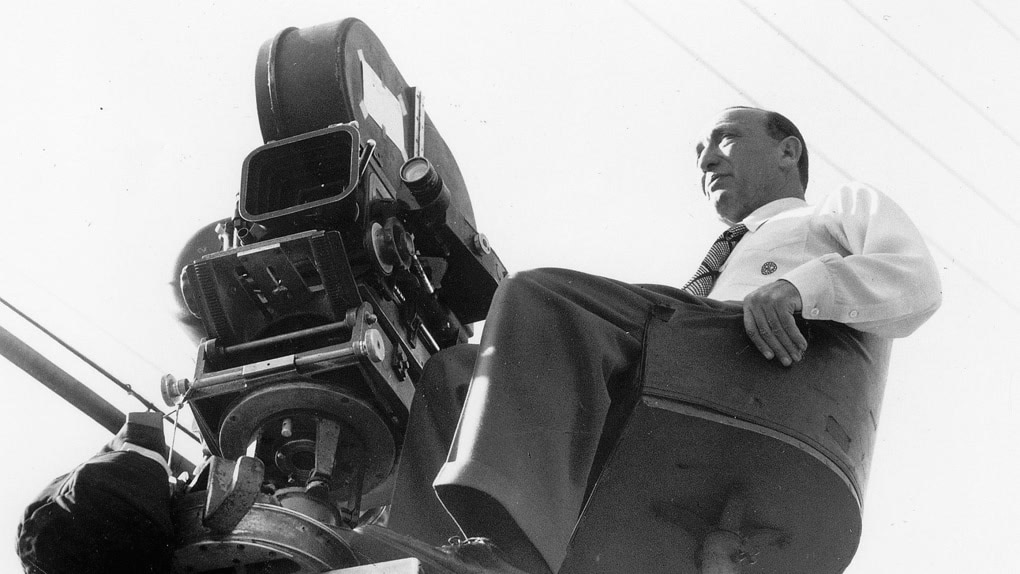 Michael Curtiz: The Directors