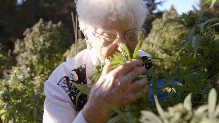 Watch Nonna Marijuana Online