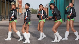 The Prancing Elites Project image