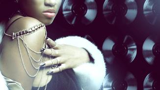 The Platinum Life image