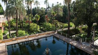 Dorne & The Water Gardens   1