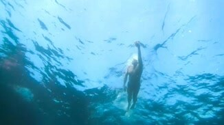 The Long Swim image