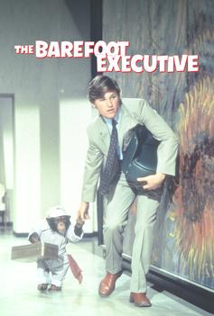 The Barefoot Executive image