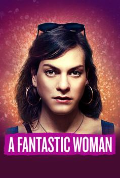 A Fantastic Woman image