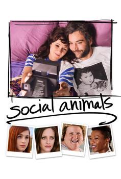 Social Animals image