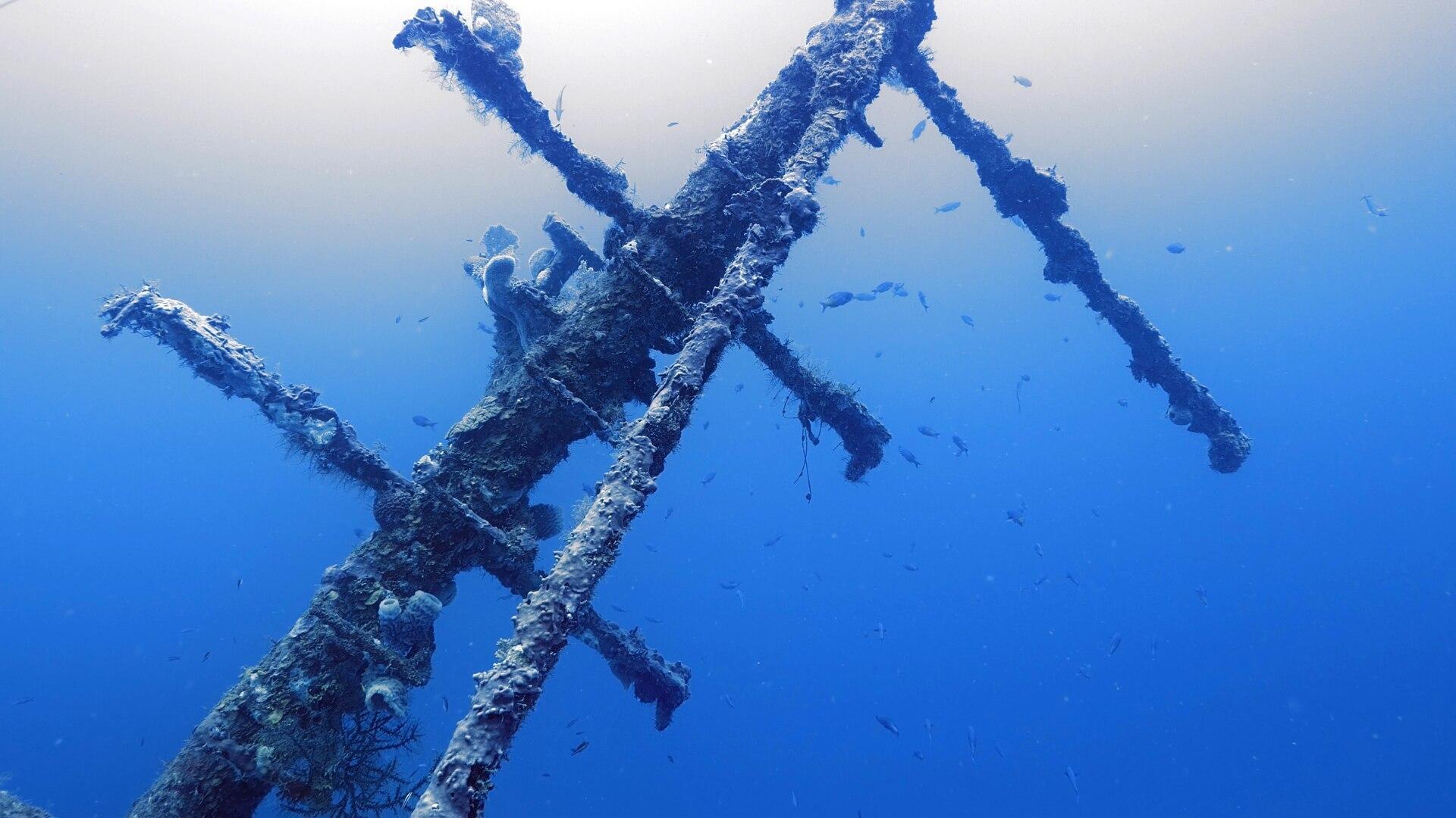 Reef Wrecks Of Roatan
