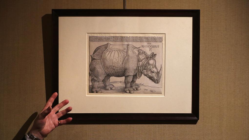 Durer - Rhinoceros