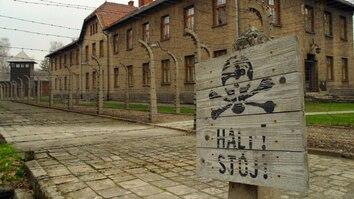 Auschwitz: Journey Into Hell