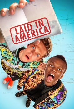 Laid In America image