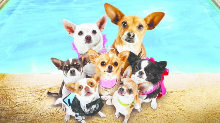 Watch Beverly Hills Chihuahua 3... Online