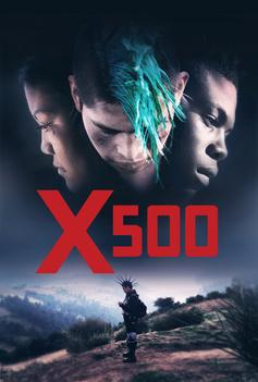 X500 image