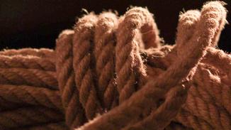 The Pleasure Of Rope image