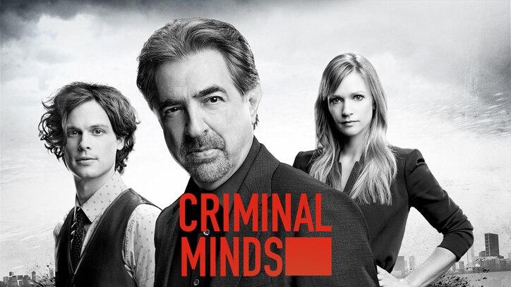 Watch Criminal Minds Online