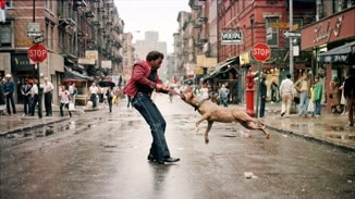 Everybody Street image